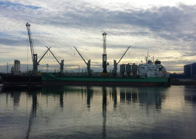 ARKLOW BANK loading ex importer on a still day in Ghent